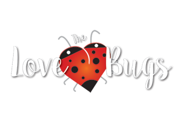 The Love Bugs - Premier Wedding and Function Band Cork