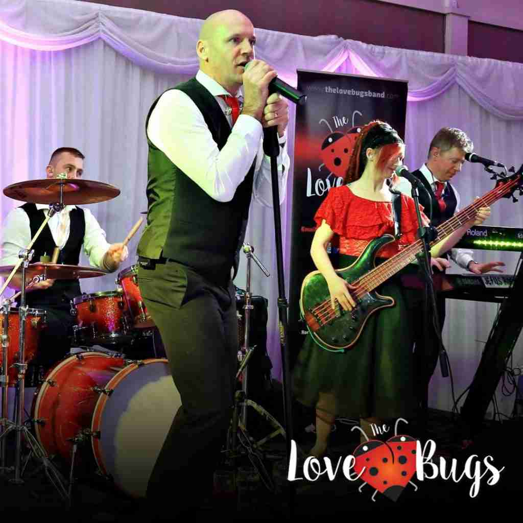 The Love Bugs - Book now with Ted Dunne Entertainment